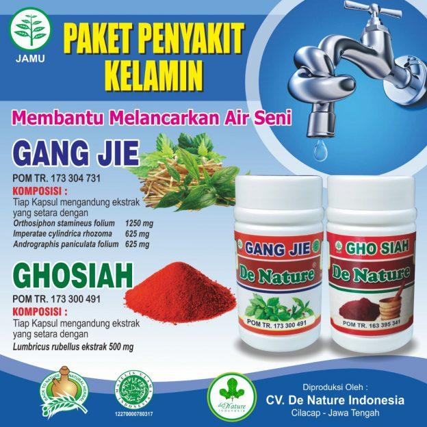 obat kencing nanah alami